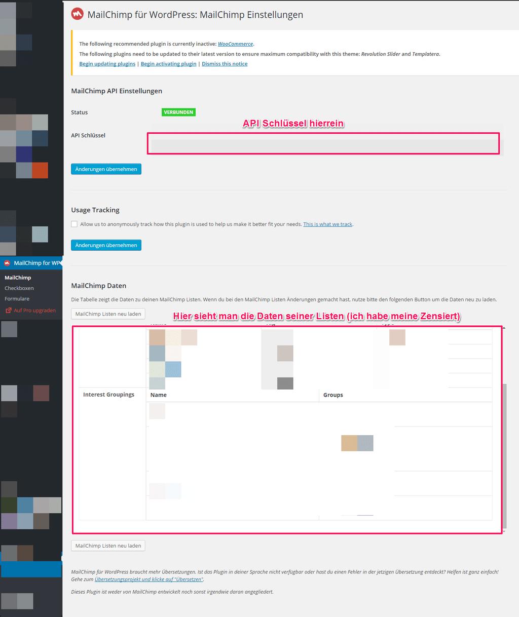 Backendansicht Mailchimp Newsletterplugin Wordpress