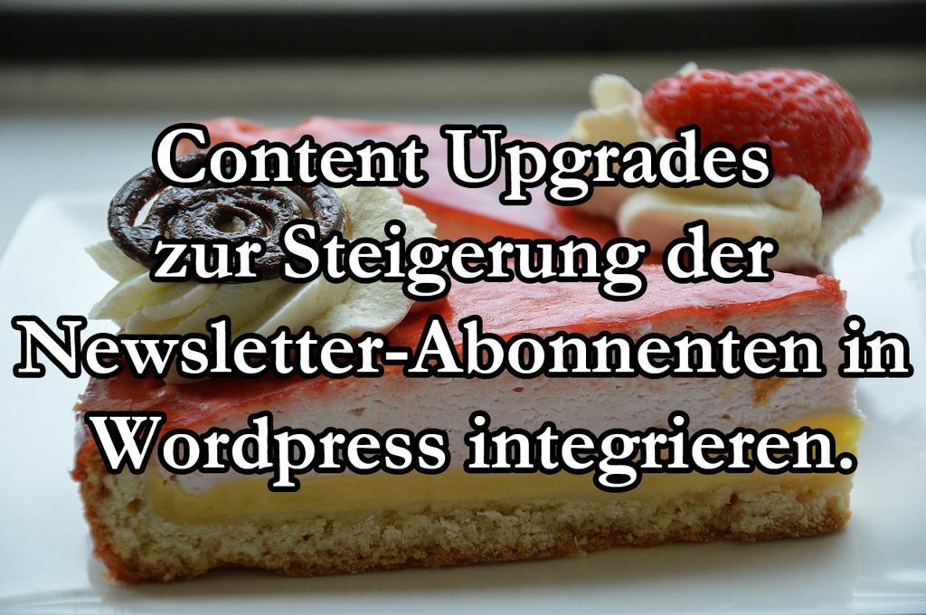 Content Upgrades Zur Steigerung Der Newsletter-Abonnenten In WordPress Integrieren