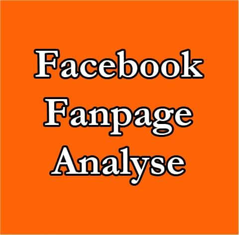 Produktbild-Facebook-Fanpage-analyse